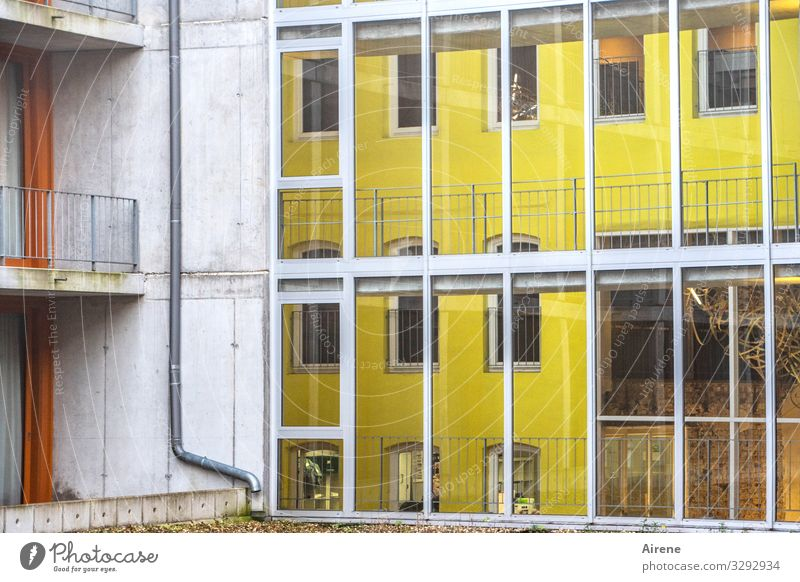 reverse glass picture House (Residential Structure) Facade Bright Yellow White Design Testing & Control Modern Living or residing Glass wall Glas facade