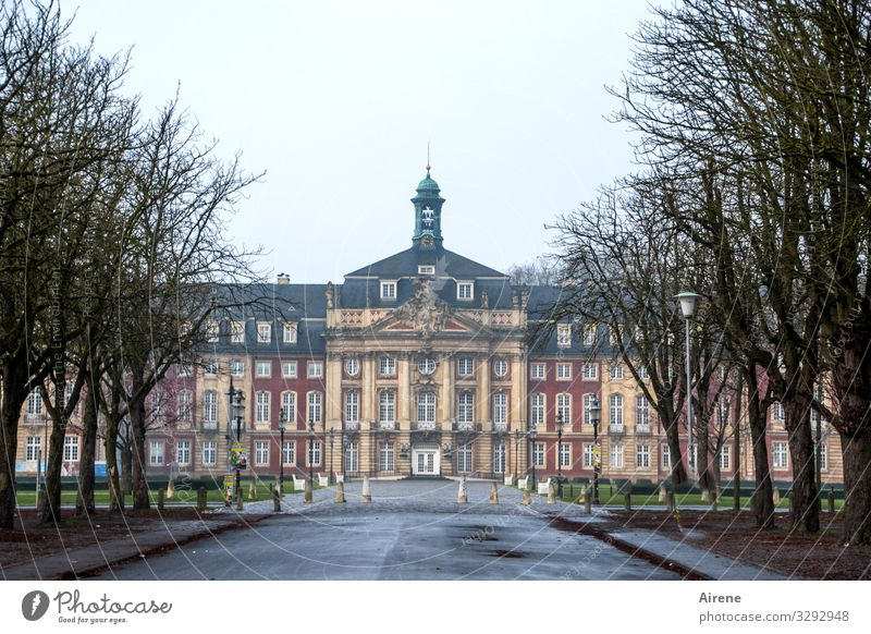 direct road Münster Gray Bad weather Avenue Approach road Castle Castle grounds Central perspective Symmetry Tourist Attraction Facade Baroque Tower Column Wide