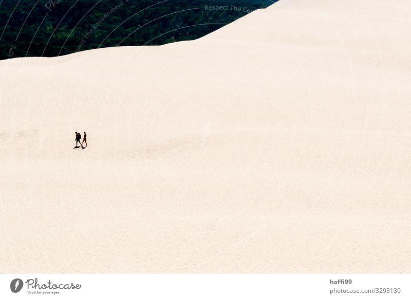 two people walking through the sand dune 'Dune du Pilat Tourism Trip Adventure Expedition Summer Sun Mountain Hiking Human being Partner 2 Sand