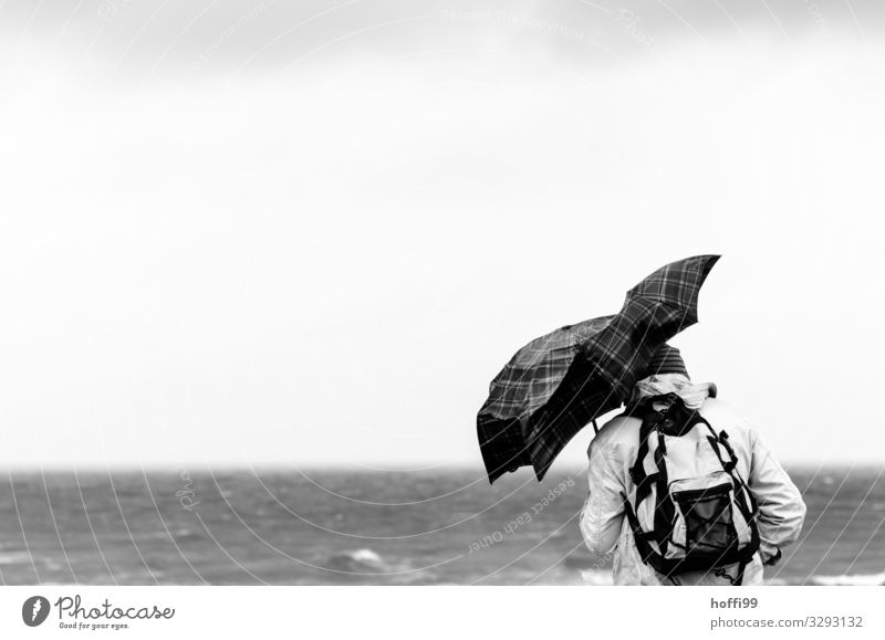 Man with deformed umbrella during heavy storm Leisure and hobbies Adventure Beach Ocean Hiking Human being Adults 1 Water Horizon Autumn Winter Climate change