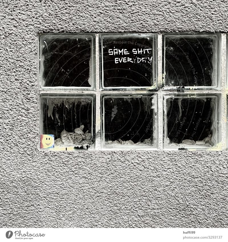 Glass bricks with the slogan of the day Town Wall (barrier) Wall (building) Window Stone Sign Characters Graffiti Threat Dirty Dark Hideous Gloomy Gray Black