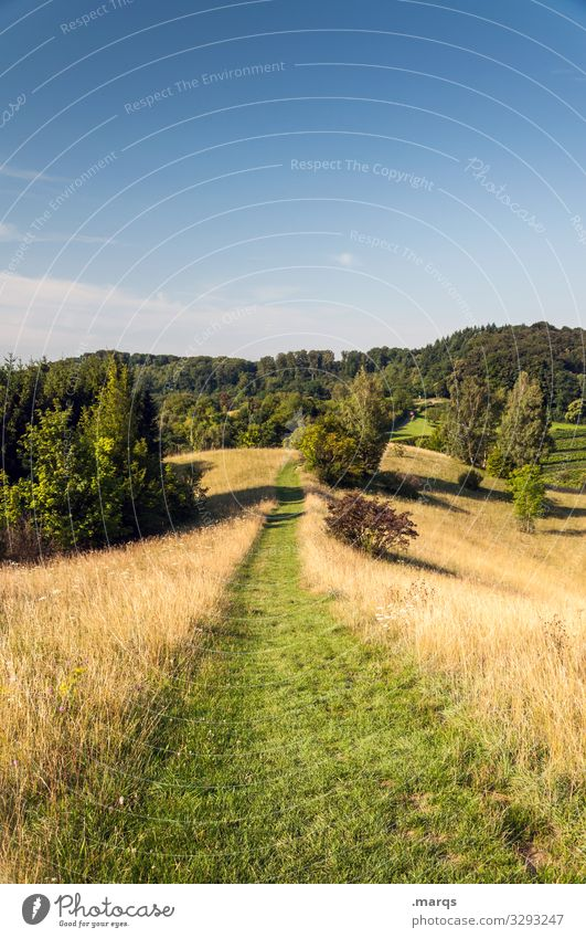 Path through a wonderfully beautiful landscape Lanes & trails Trail Nature Relaxation Meadow Target Hiking Leisure and hobbies Sky Summer Cloudless sky