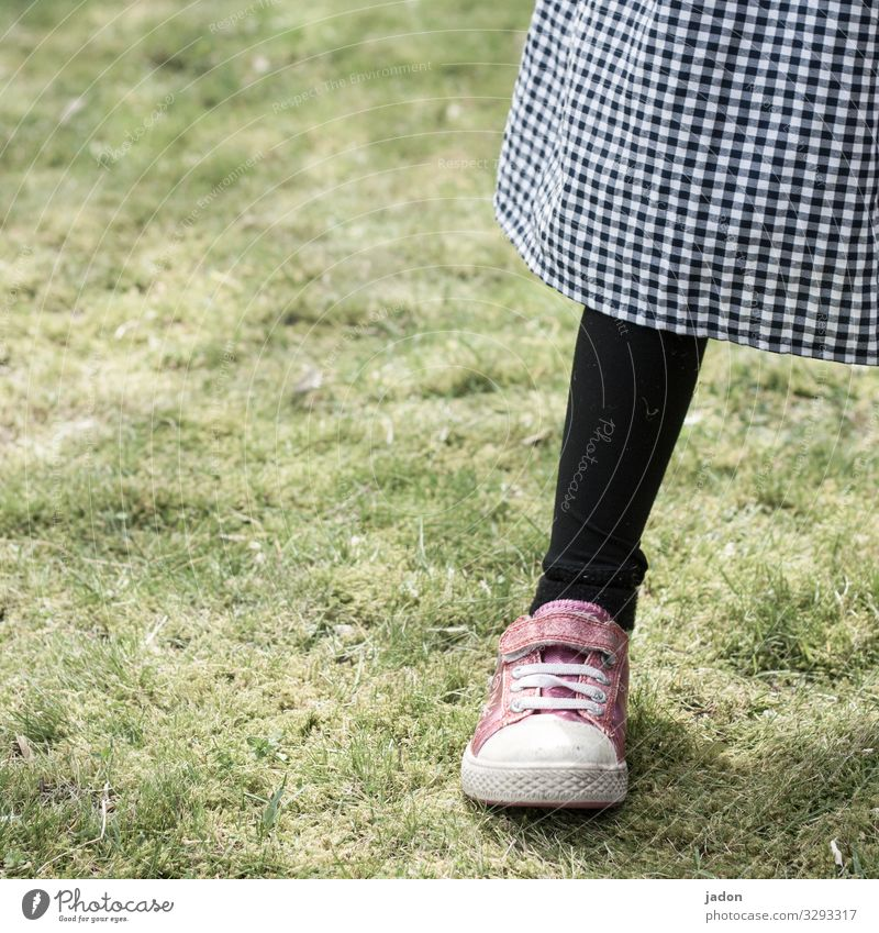 the sense of the sock. Style Legs Feet 1 Human being Nature Grass Meadow Skirt Stockings Tights Sneakers Stand Black Contentment Checkered Colour photo