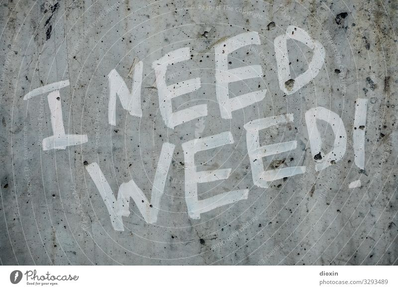 I need weed! Intoxicant Frankfurt Town Downtown Deserted Wall (barrier) Wall (building) Concrete Characters Graffiti Trashy Grass Cannabis Dependence