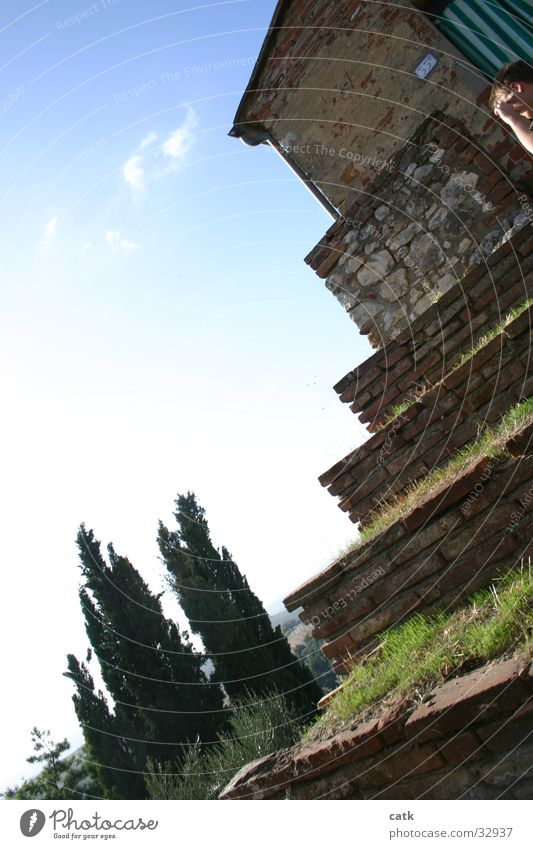 Sky Tree House (Residential Structure) Grass Architecture Italy Tuscany