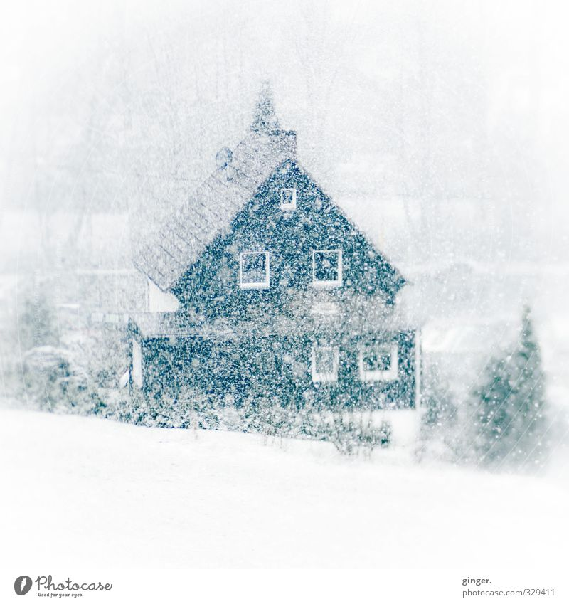 White Winter House (Residential Structure) Environment Window Cold Snow Snowfall Weather Bushes Roof Many To fall Infinity Muddled Narrow