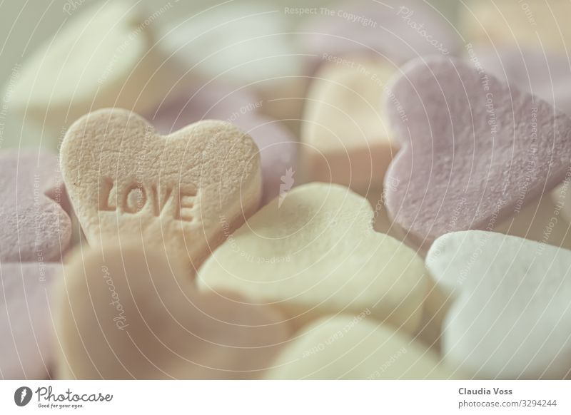 Sugar sweet love Love Candy Pink Emotions Romance Dream Colour photo Detail