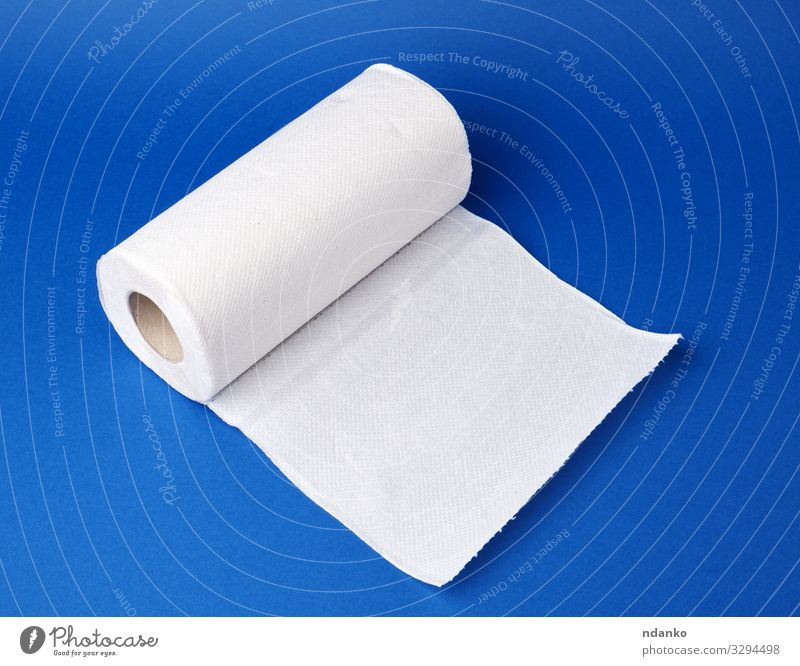 twisted roll of white paper towel Kitchen Paper Clean Soft Blue White backdrop Blank circle disposable Domestic equipment Home Household Housekeeping hygienic