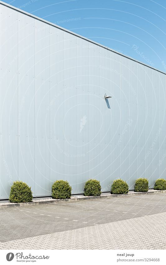 Room for ideas Garden Bushes Foliage plant Deserted Industrial plant Building Warehouse Wall (barrier) Wall (building) Facade Steel Blue Silver White Prompt