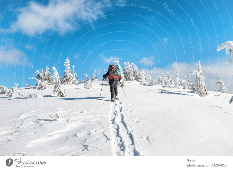 Man hiking on snow in mountains Human being Sky Vacation & Travel Nature Youth (Young adults) Blue White Landscape Red Tree Clouds Loneliness Forest Winter