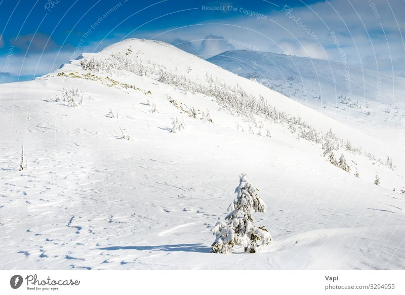 Winter landscape in mountains Sky Vacation & Travel Nature Christmas & Advent Blue Beautiful White Landscape Sun Tree Clouds Forest Mountain Yellow Environment