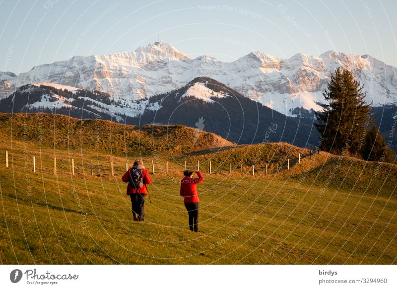 Hiking in the Appenzeller Land Life Vacation & Travel Winter Snow Winter vacation Mountain Feminine Adults 2 Human being 45 - 60 years Nature Climate change