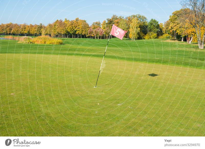 Golf flag near trap Sky Nature Summer Plant Blue Beautiful Green White Landscape Red Tree Forest Lifestyle Autumn Yellow Spring