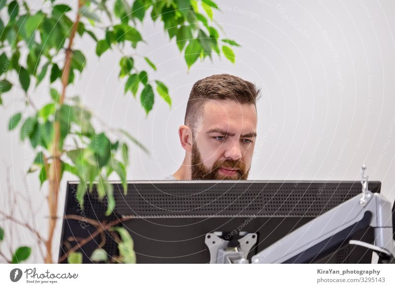 Bearded man works behind computer monitor in office Nature Man Plant Green White Lifestyle Adults Business Head Work and employment Office Design Modern
