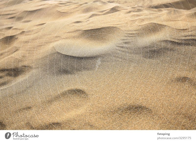 Maspalomas Vacation & Travel Tourism Trip Beach Island Nature Landscape Sand Wind Desert Tourist Attraction Dry Destination Dune dunes Europe Gran Canaria
