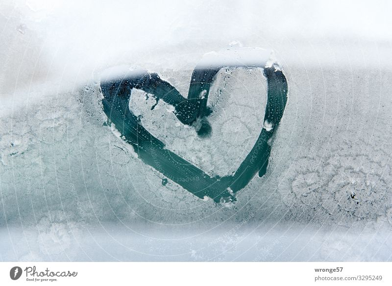 A little warmth in the morning Glass Sign Heart Happy Spring fever Love Sincere Frost Ice Winter Cold Pane Window pane Colour photo Subdued colour Exterior shot