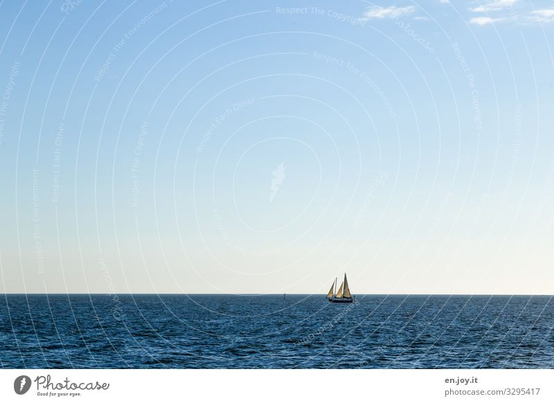 beyond the horizon Leisure and hobbies Sailing Aquatics Nature Landscape Cloudless sky Horizon Summer Beautiful weather Ocean Florida Boating trip Sailing ship