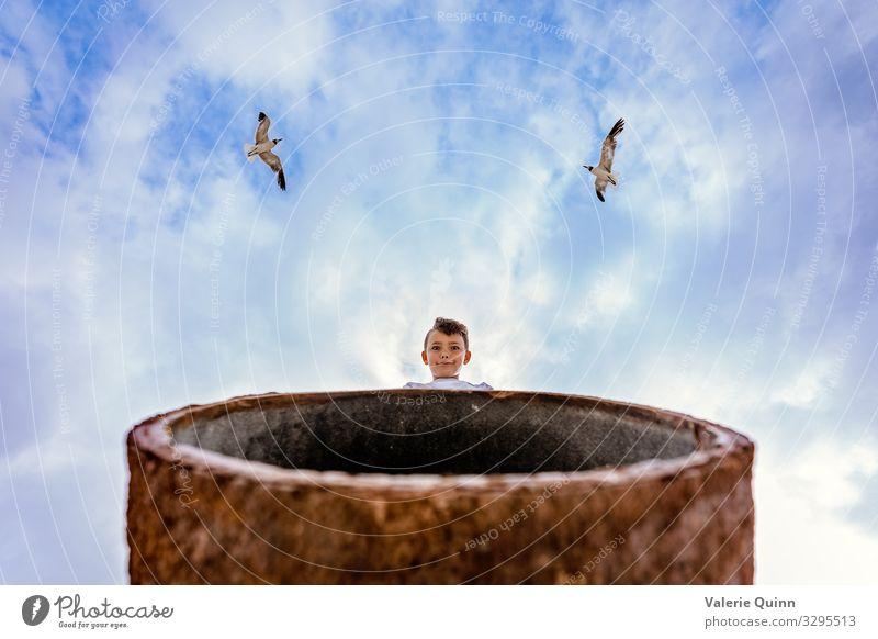 Seagulls Overhead Child Human being Sky Summer Animal Beach Funny Boy (child) Bird Fear Metal Wild animal Infancy 8 - 13 years Concern