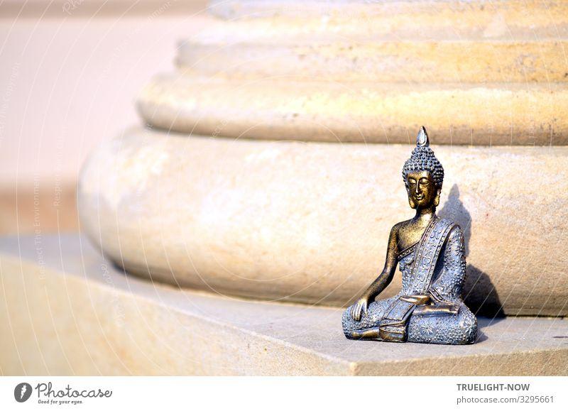 Column saint! Lifestyle Joy Happy Health care Alternative medicine Healthy Eating Wellness Harmonious Well-being Relaxation Calm Meditation Leisure and hobbies