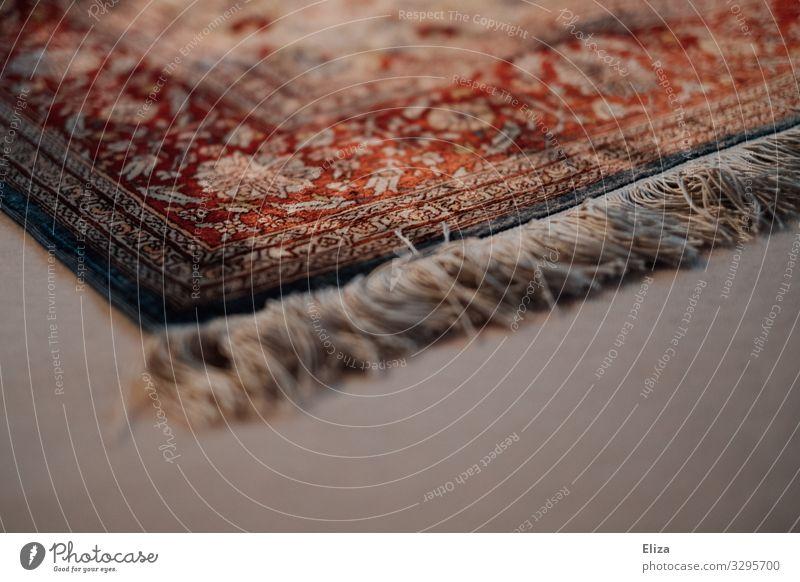 Living or residing Floor covering Ground Cozy Ornament Carpet Ornamental Fringe Rug fringe Bordered rug