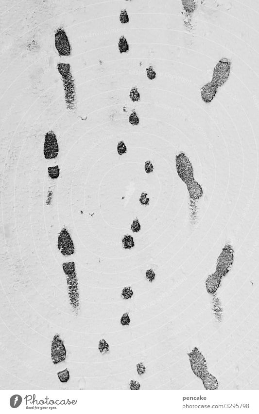 ice age | gassi go Nature Elements Winter Weather Ice Frost Snow Authentic Cold Footprint Dog Human being To go for a walk Lanes & trails Black & white photo