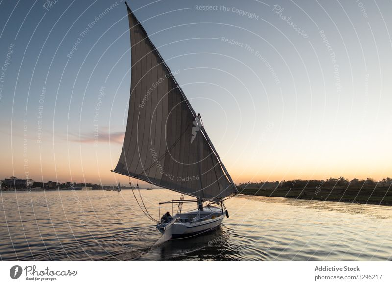 Traditional boat floating in rivet in sunset tourism yacht river travel water nature transport coast skyline scene blue day vacation transportation ship felucca
