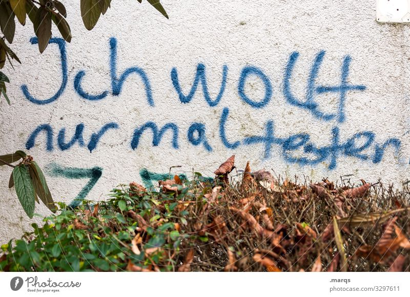 Test | Written Autumn Bushes Wall (barrier) Wall (building) Characters Graffiti Communicate Dirty Trashy Wisdom Attempt Vandalism Youth culture Colour photo