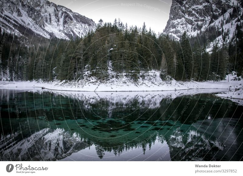 Mountain Landscape reflected in a small turquoise lake in winter Nature Water Winter Ice Frost Snow Tree Rock Alps Snowcapped peak Esthetic Fluid Fresh Cold Wet