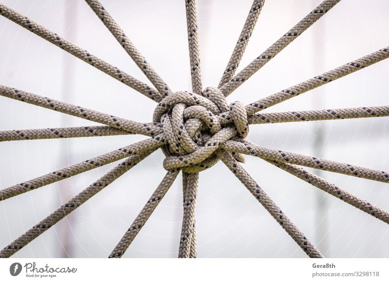 many ropes and one big knot close up Rope Tie Line Communicate Large Contact Attachment abstract background affiliation apposition cable combination compound