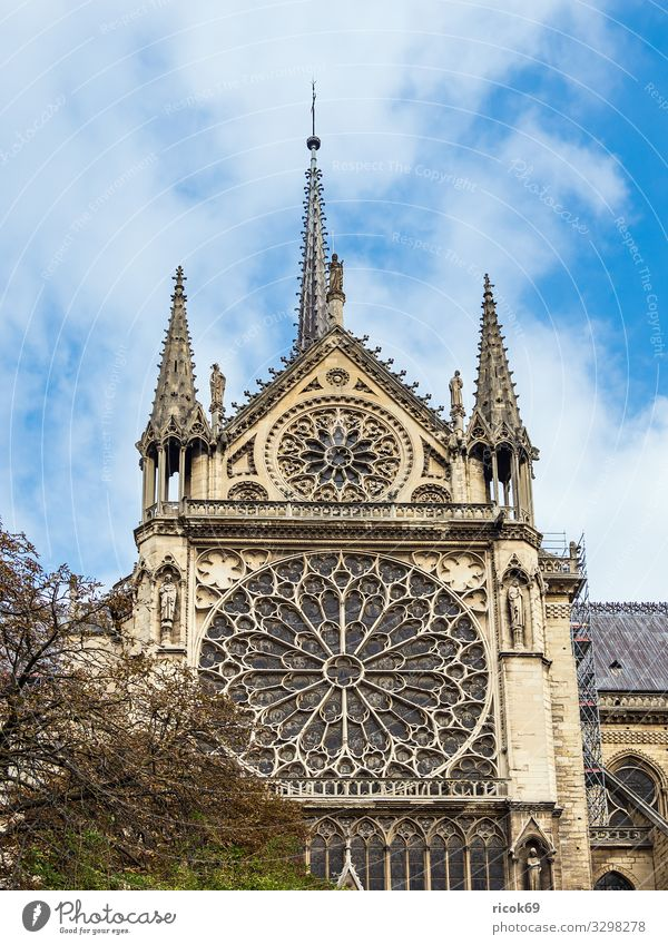 View of the cathedral Notre-Dame in Paris, France Relaxation Vacation & Travel Tourism City trip House (Residential Structure) Clouds Autumn Tree Town