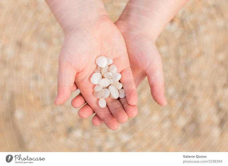 Cape May Diamonds Child Hand 1 Human being 3 - 8 years Infancy Beach Stone Sand Adventure Vacation & Travel Hold Coast cape may diamonds Colour photo
