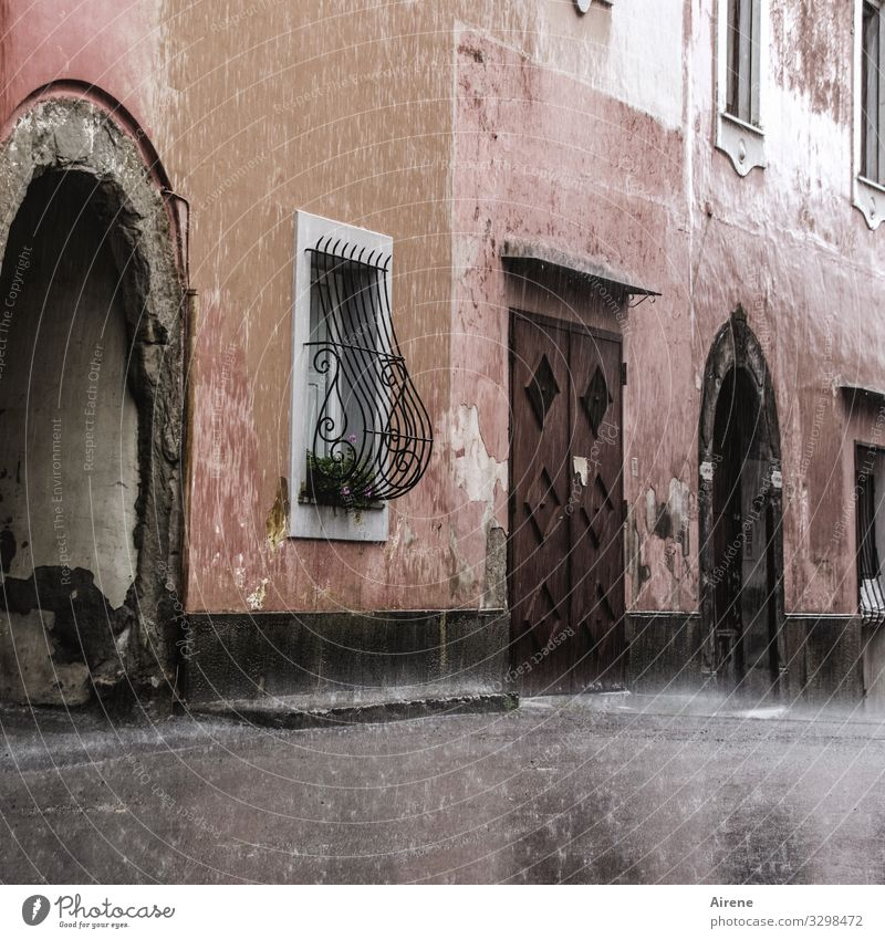 pink house in the rain Pink House (Residential Structure) Facade Mediterranean Rain Exterior shot Deserted downpour Italian Village Bad weather Old Old building
