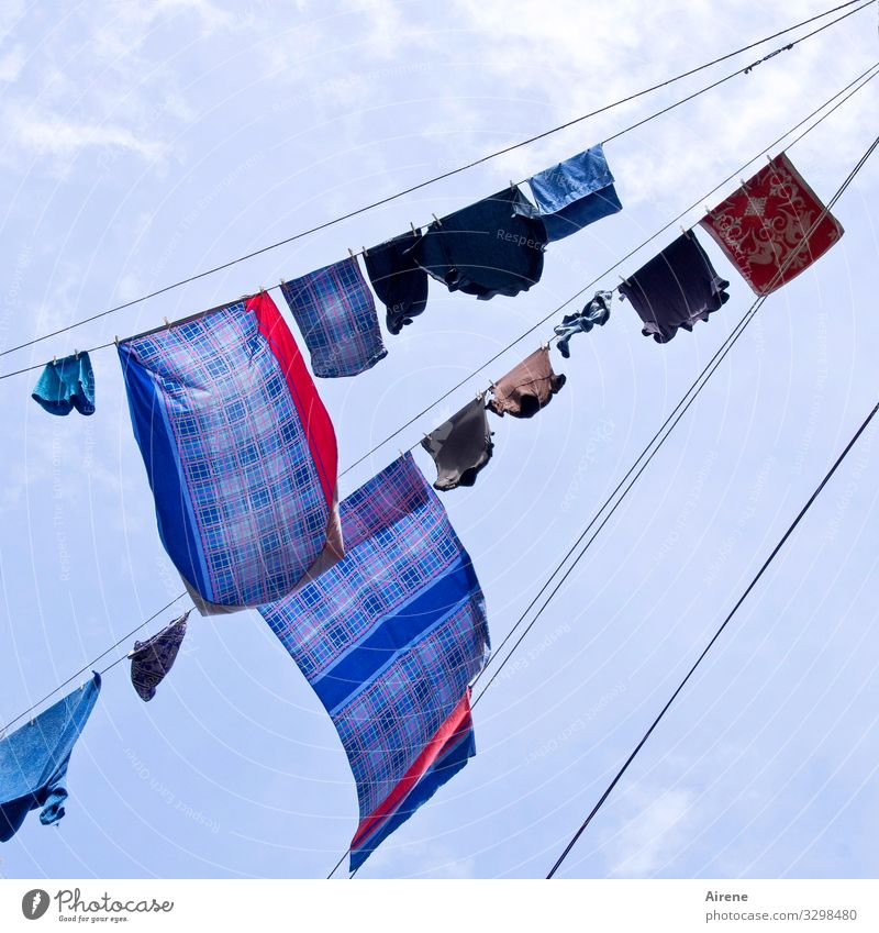 Bed change Living or residing Clothesline Washing Bedclothes Sky Sky only Beautiful weather Wind Naples Hang Fragrance Above Dry Blue Multicoloured Diligent