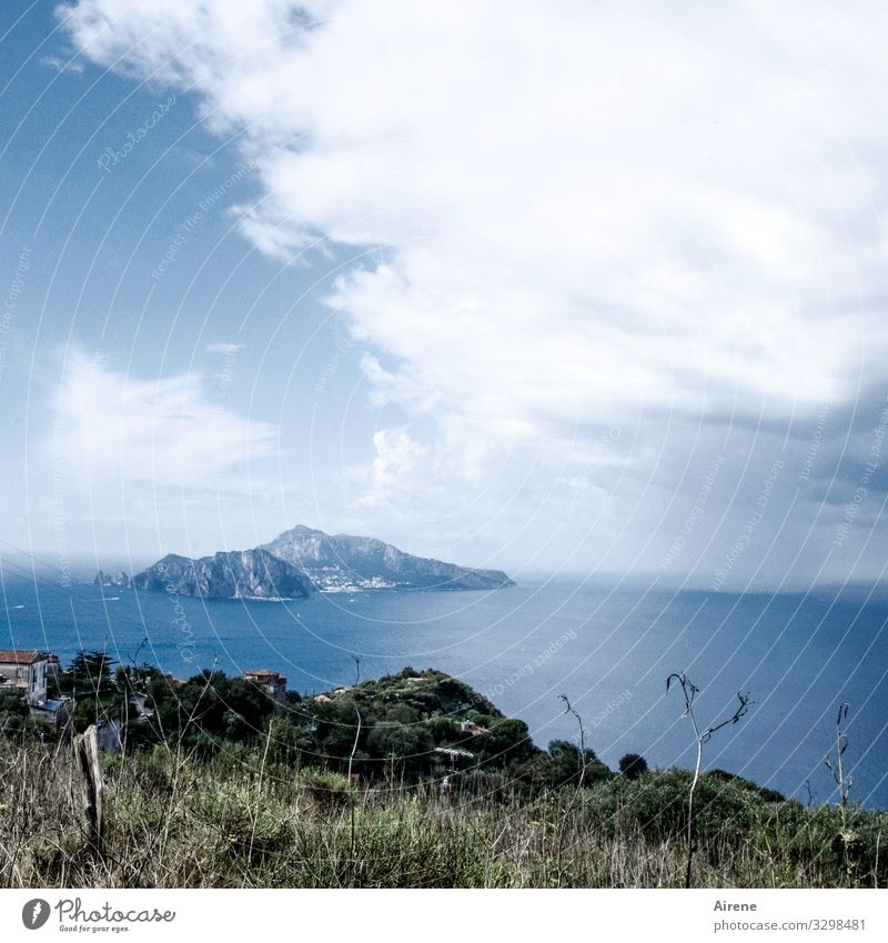 Ah, Italy! Capri Island Mediterranean Summer Summer vacation Ocean Coast Vacation & Travel Tourism Blue Day Deserted Far-off places Freedom Relaxation Sky