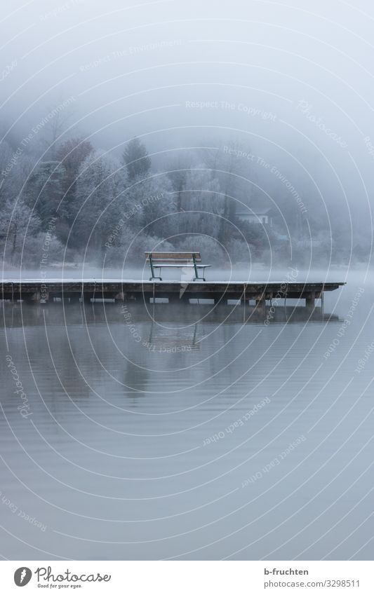 Nature Landscape Relaxation Loneliness Calm Winter Autumn Environment Lake Moody Ice Dream Fog To enjoy Empty Wait