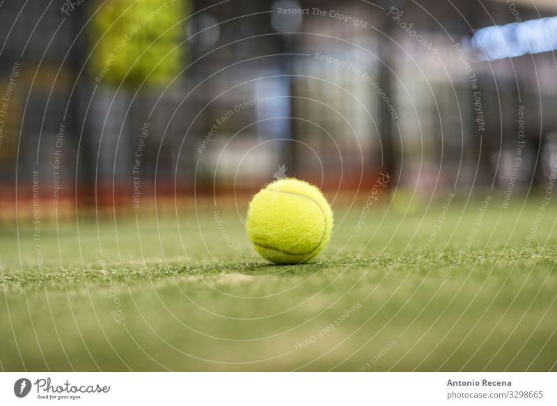Ball Relaxation Sports Grass Yellow ball paddle tennis padel Tennis Object photography turf net single ball background focus in foreground Single Court building