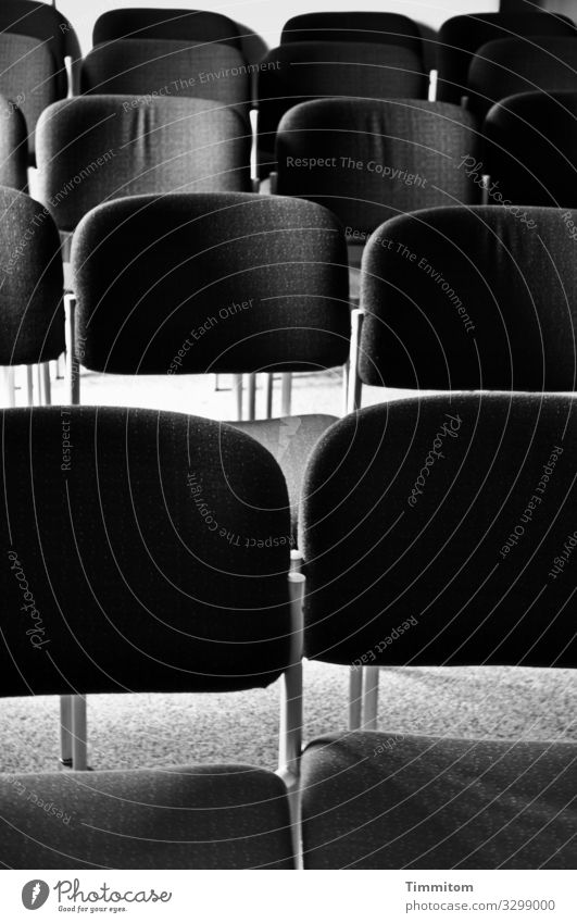 Chair rows Wait Simple Gray Black White Emotions Expectation Hall Seating capacity Carpet Event Black & white photo Interior shot Deserted Day Light Shadow