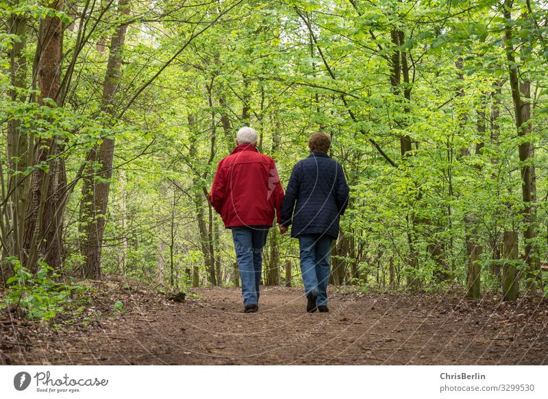 Walk through the spring forest Human being Female senior Woman Male senior Man Grandparents Senior citizen Couple Life 2 60 years and older Nature Landscape