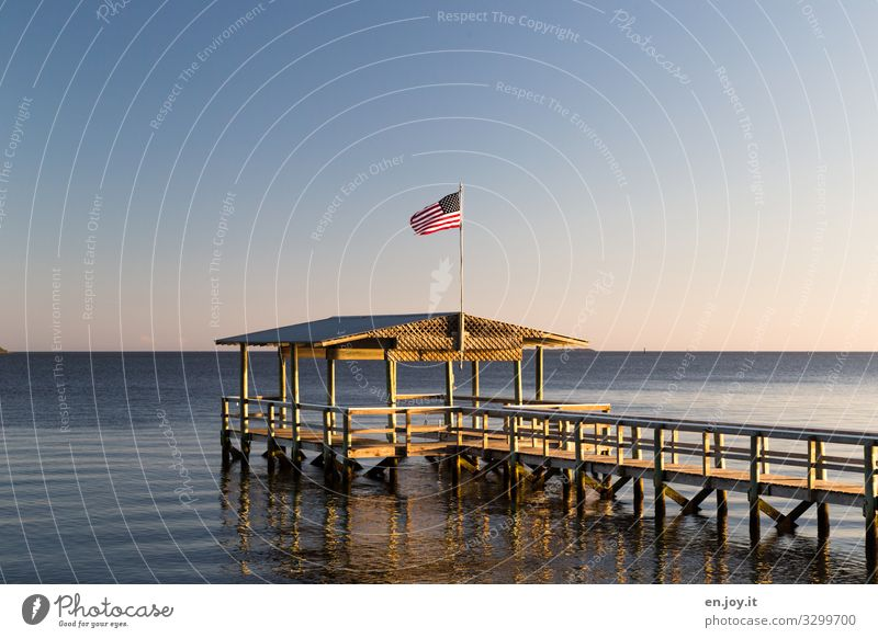Undoubtedly USA Vacation & Travel Summer Summer vacation Ocean Cloudless sky Horizon Beautiful weather Florida Americas North America Footbridge Jetty Boathouse