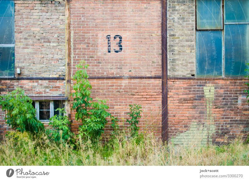 Thirteen GDR Pankow Commercial building Industrial zone Window Brick wall Metal Rust 13 Brown Secrecy Apocalyptic sentiment Center point Arrangement Symmetry