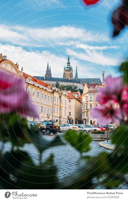 Prague Town Capital city Blue Green Violet Orange Pink Church Flower House (Residential Structure) Czech Republic Clouds Sky Manmade structures Car