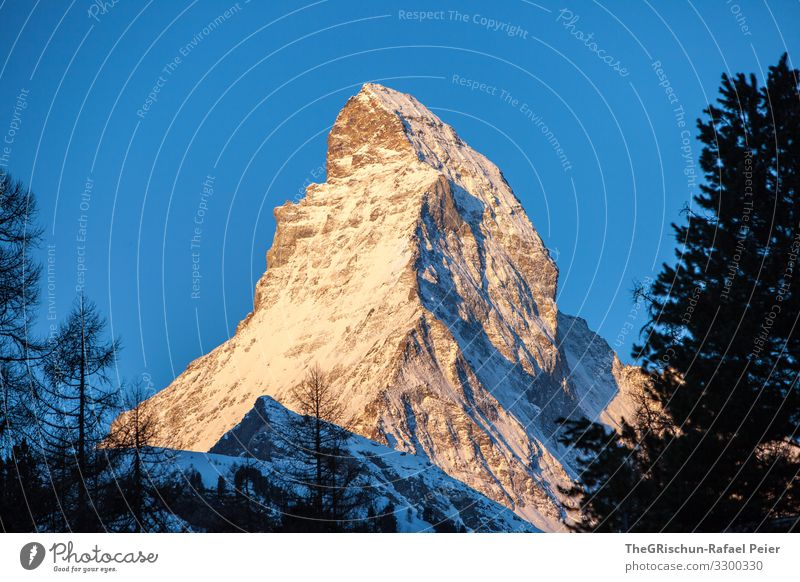 Matterhorn - s'Horu Nature Esthetic Switzerland Tourism Valued Icons Famousness Structures and shapes Tree Sunrise Canton Wallis Zermatt Shadow Trademark