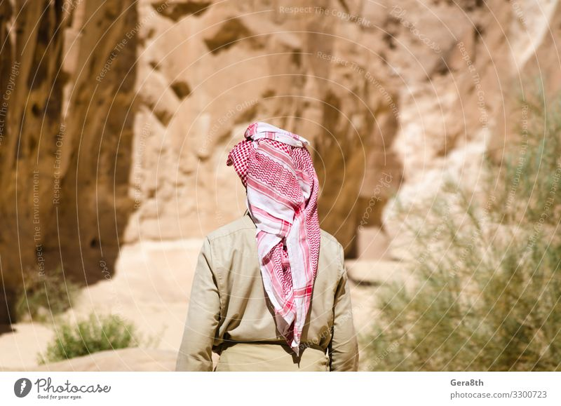 bedouin in white goes in the canyon in the desert Human being Sky Vacation & Travel Nature Man Summer Plant Blue Colour Green Landscape Mountain Adults Warmth