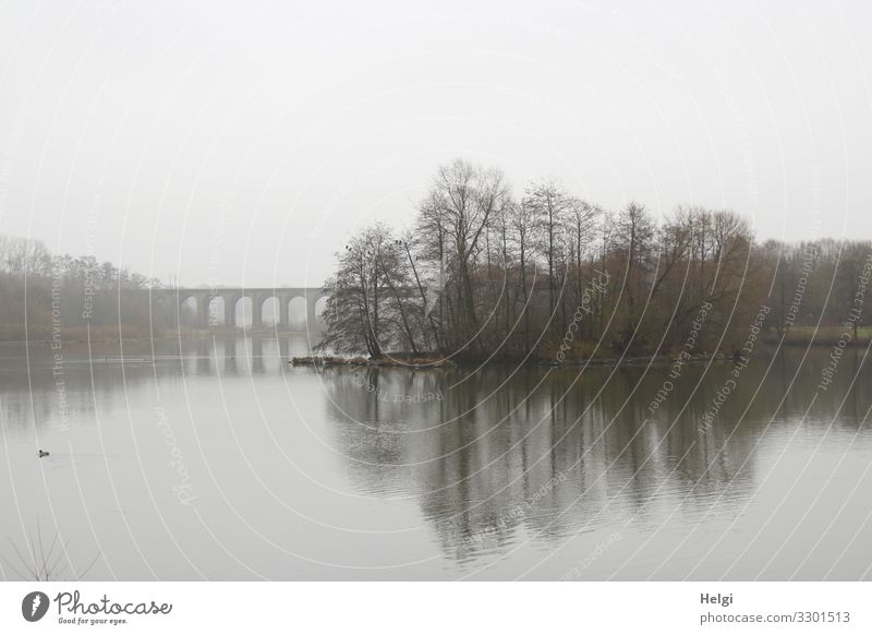 Lake in fog with trees, bridge and reflection Environment Nature Landscape Plant Water Sky Clouds Winter Fog Tree Lakeside Bridge Manmade structures viaduct