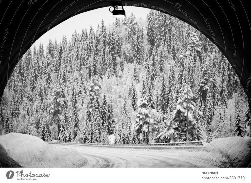 At the end of the tunnel. Winter Snow Landscape Tree Mountain Nature Sky White Dusk Frost Seasons Blue Frozen Beautiful Tunnel Passage Norway Norwegian