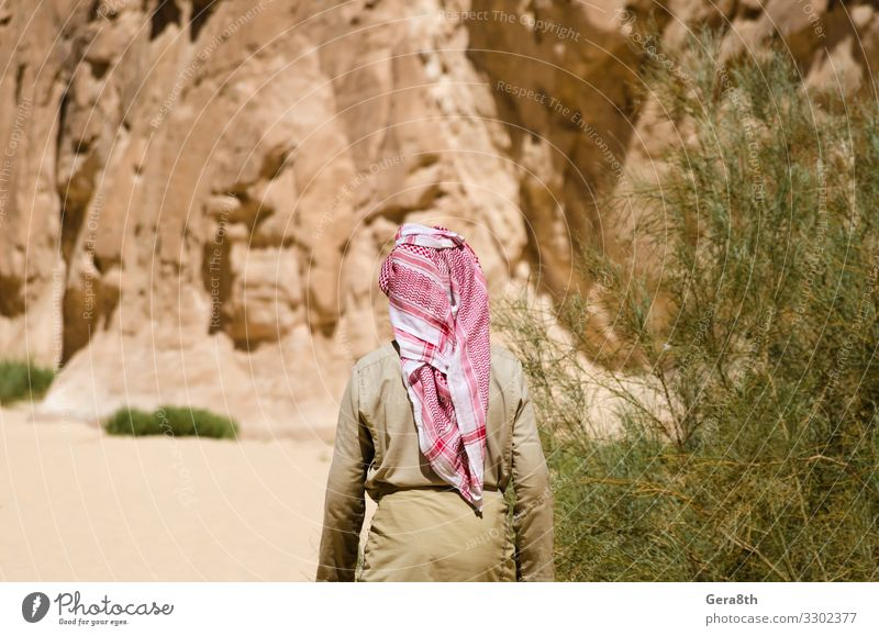 bedouin in white goes in the canyon in the desert in Egypt Exotic Vacation & Travel Tourism Summer Mountain Human being Man Adults Nature Landscape Plant Sky