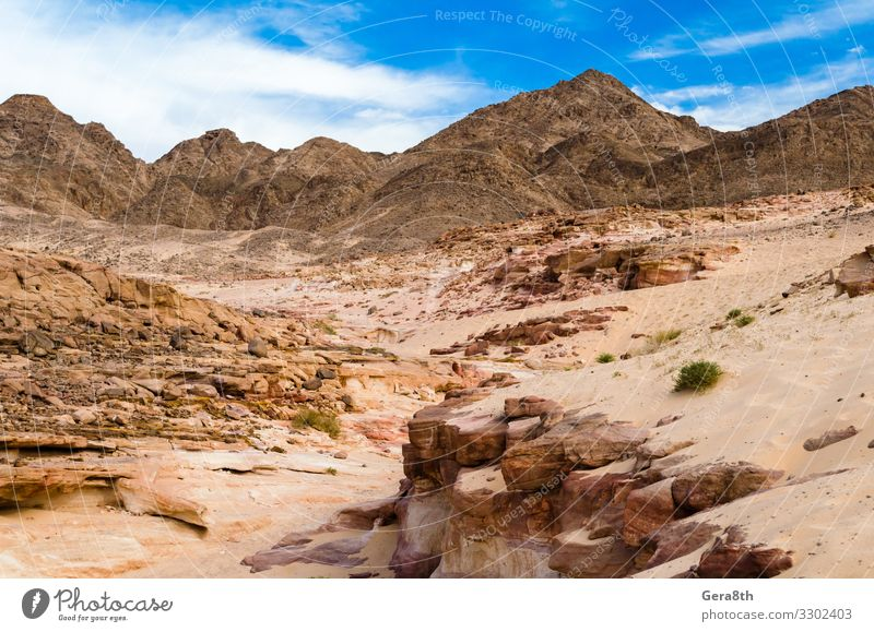 desert canyon on a background of mountains in Egypt Exotic Vacation & Travel Tourism Summer Mountain Nature Landscape Sand Warmth Rock Canyon Stone Bright