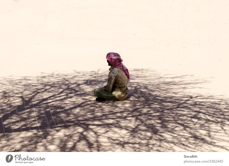 bedouin prays in the shade of a tree in the desert in Egypt Summer Human being Man Adults Nature Sand Clothing Scarf Sit Black Religion and faith Arabic clothes