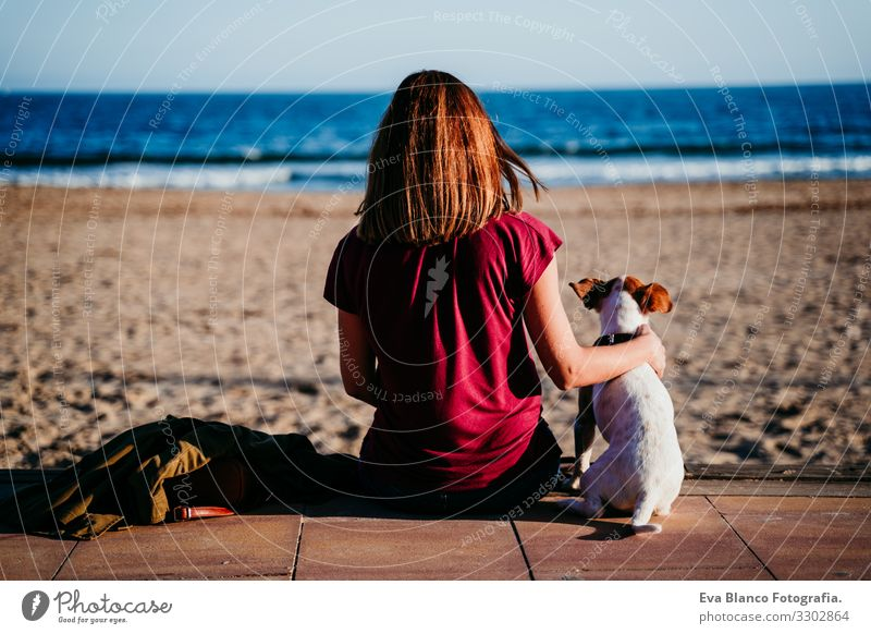 woman and her cute cute sitting at the beach. back view Woman Dog Jack Russell terrier Love Beach Sunset Together White Leisure and hobbies Beautiful Lifestyle