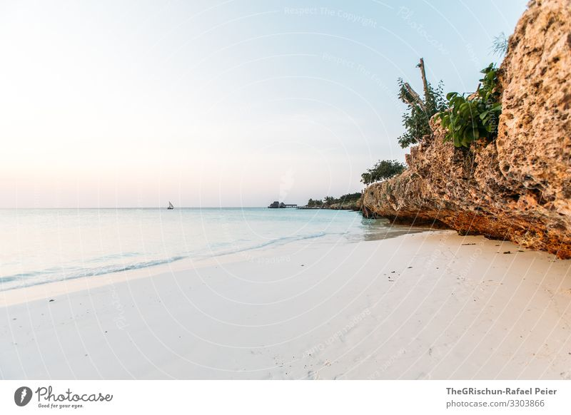 Beach on Zanzibar Colour photo Exterior shot Africa Water Summer Relaxation evening mood Vacation & Travel Nature Sand Ocean Tansania Rock Horizon ship